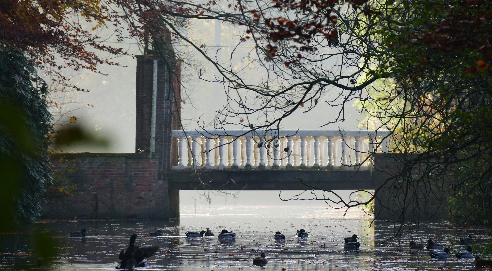 Wasserschloss Egelborg - Brücke im Herbst