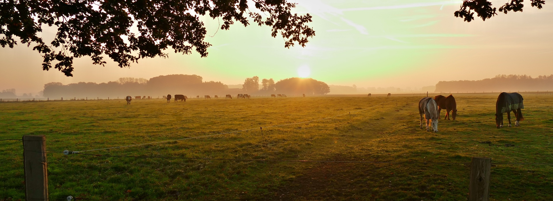 ländlicher Herbstmorgen