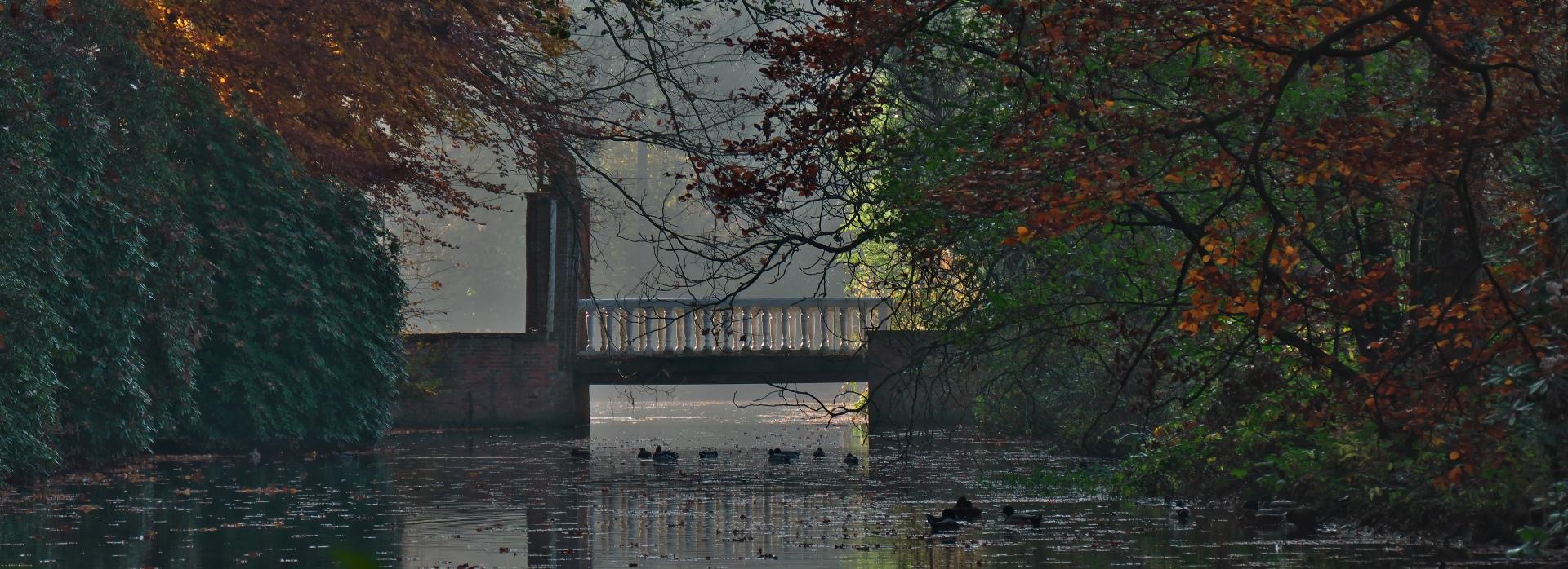 Schlossbrücke im Herbst
