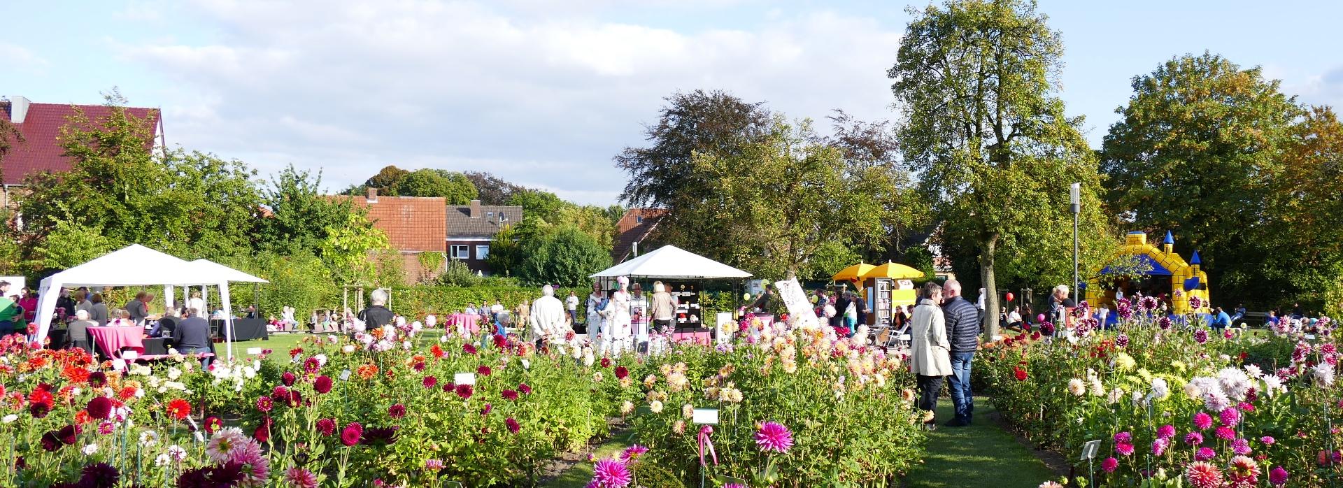 Veranstaltung im Dahliengarten